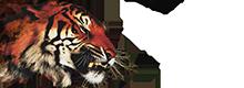 TigerShop
